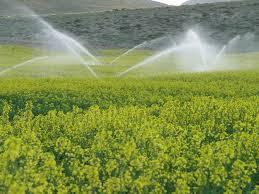 انواع تجهیزات آبیاری بارانی